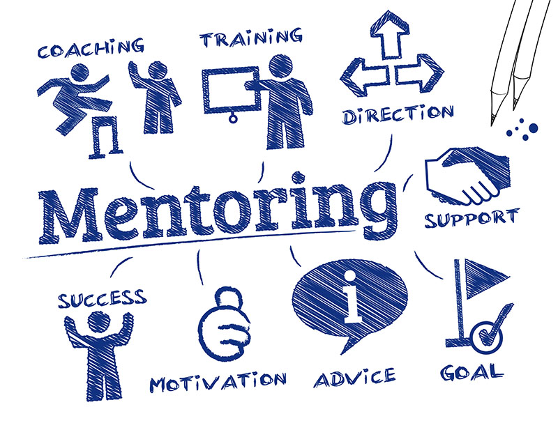 Live Innovations Lead the Way in Fostering Mentoring Effect in Entrepreneurship